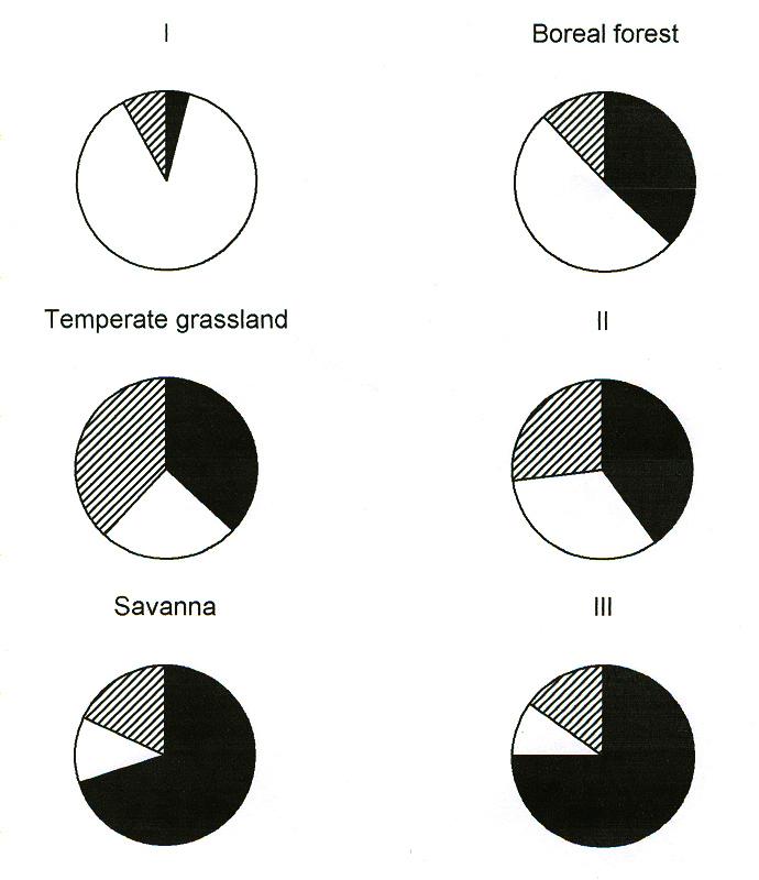 Kementerian pendidikan nasional dirjen manajemen pendidikan dasar skema berikut menggambarkan distribusi nitrogen dalam materi organik yang mulai membusuk mulsa akar dan tanah untuk 6 bioma berbeda ccuart Image collections